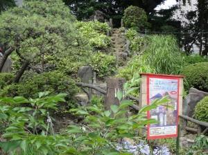 鳩の森神社6富士塚登山道