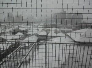 2月8日、会場の外は大雪!